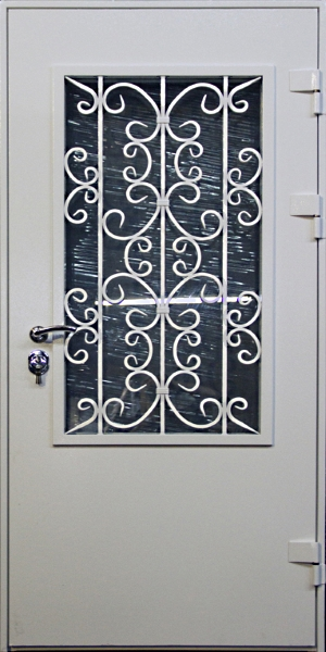 стекло металлические двери с решеткой